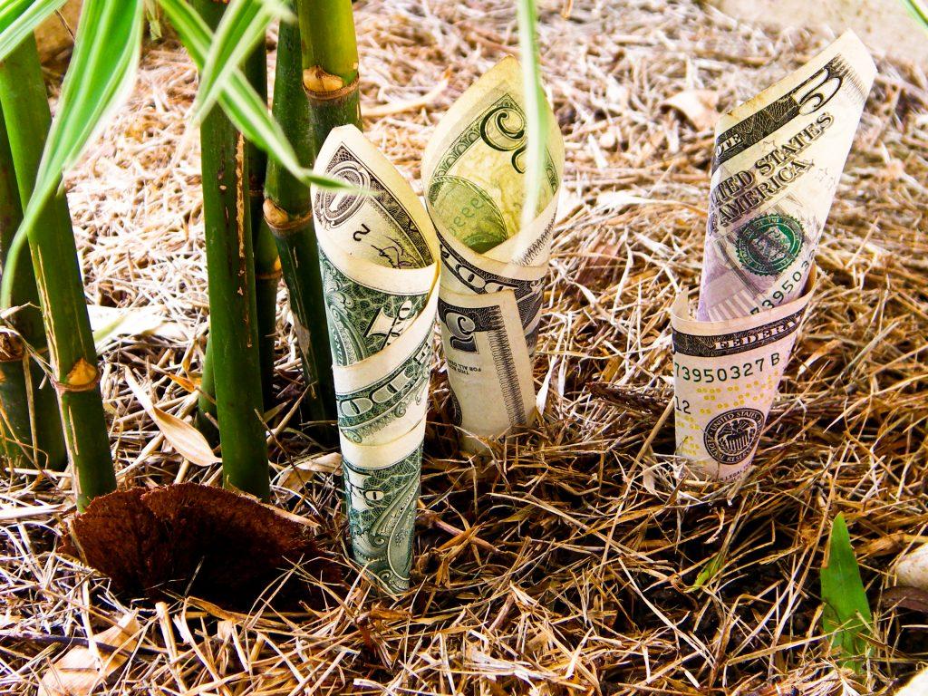 Tiền là gì? Bạn đã hiểu về tiền chưa? [Fin101 - #1]